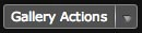 gallery-actions-button