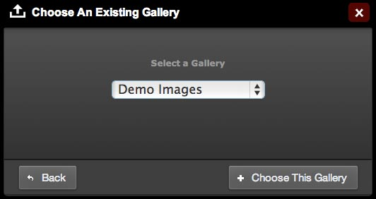 select-upload-gallery