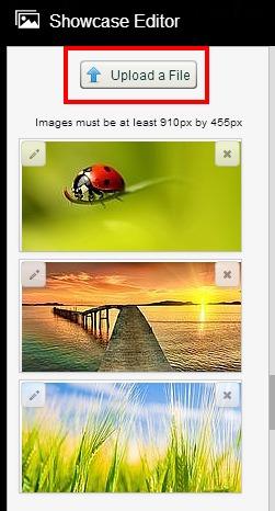 showcase upload image