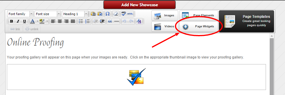 """Once in the Page editor, click on """"Page Widgets"""""""